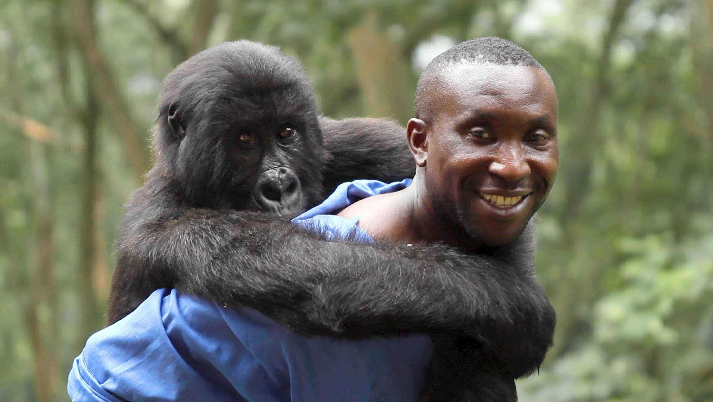 Filme Africano regarding tópicos sobre cinema africano - rede angola - notícias